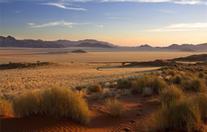 Namib Rand Nature Reserve