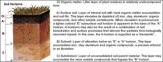 Soil composition earth dynamics for Earth soil composition
